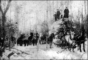 Lumbermen1